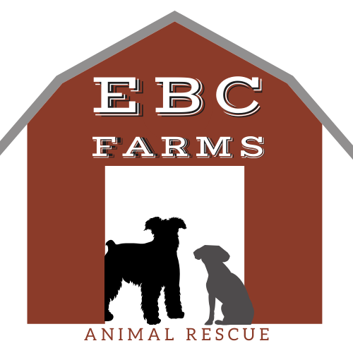 EBC Farms Dog and Horse Animal Rescue Ranch